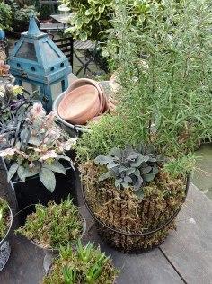 garden_home_store_lavenham012