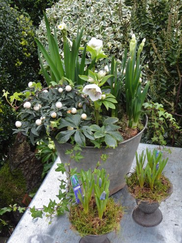 garden_home_store_lavenham025