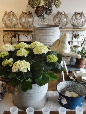 garden_home_store_lavenham030